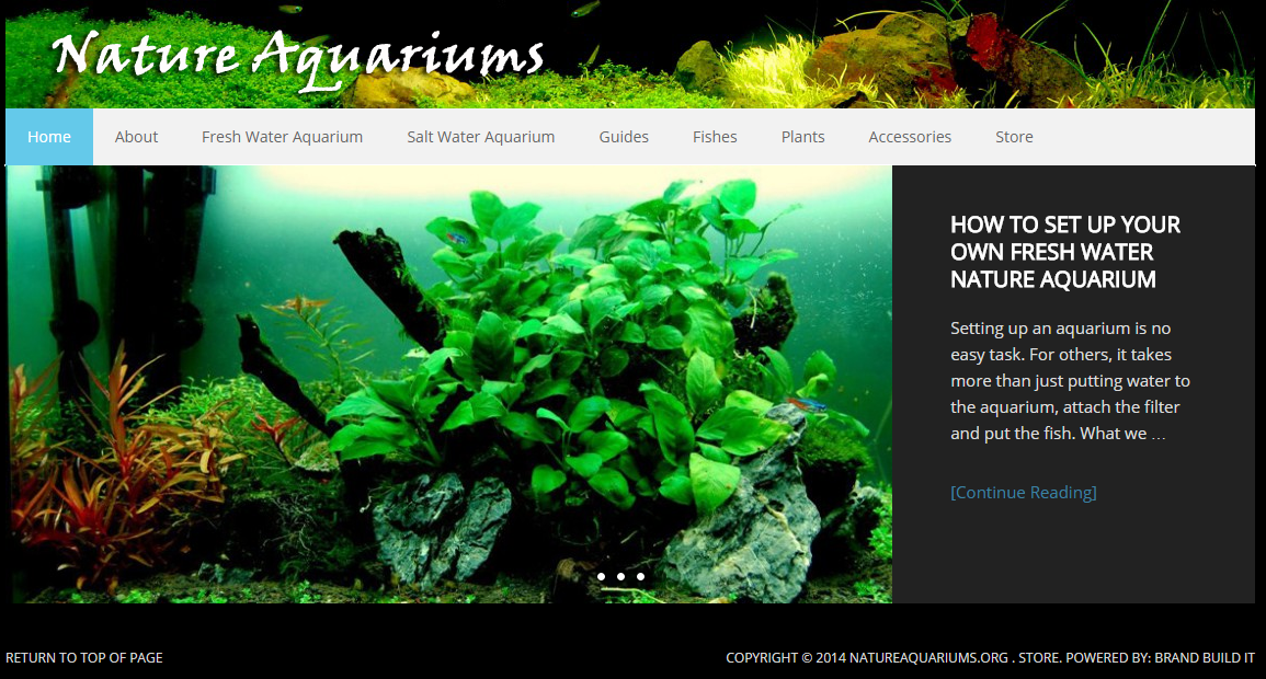 Next Project: How To Build Aquarium Website